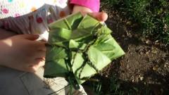 Blätterpaket